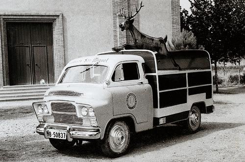 Creacio de una furgoneta Anís del Ciervo 1964