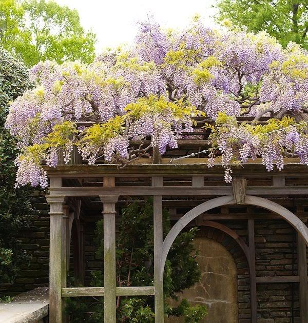 The Arbors At California Oaks: Busy At Home: Dumbarton Oaks