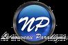 NP-le-nouveau-paradigme-copie-1