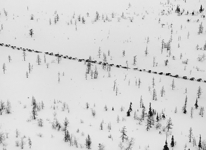 Salgado: The caravan of sledges prepares to cross the Ob River