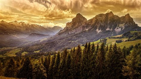 nature landscape mist mountain valley forest clouds