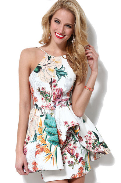 "CHIC ""Winter Wind"" Botanical Print Skater Dress"