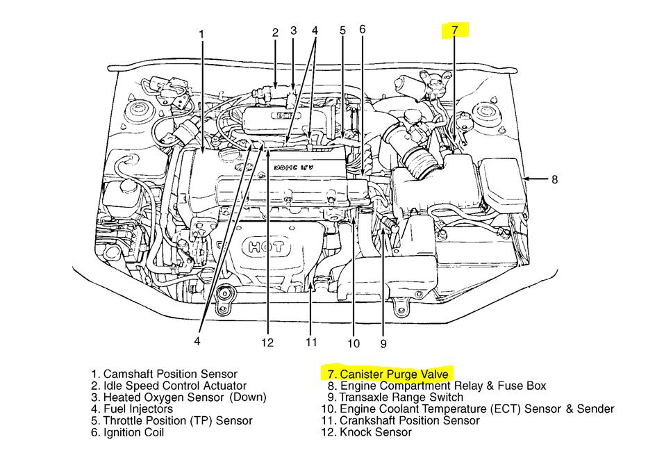 2013 Hyundai Elantra Engine Diagram Wiring Diagram Bound Pride Bound Pride Lastanzadeltempo It