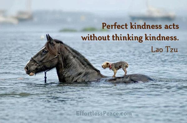 Kindness Quotes Inspirational Quotes Pictures Motivational