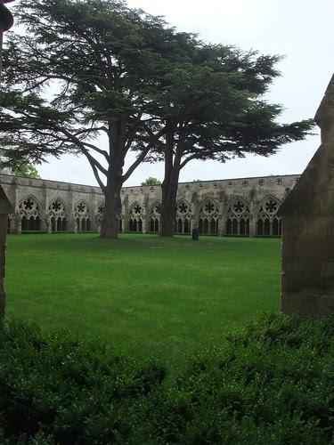 Salisbury Cathedral quad