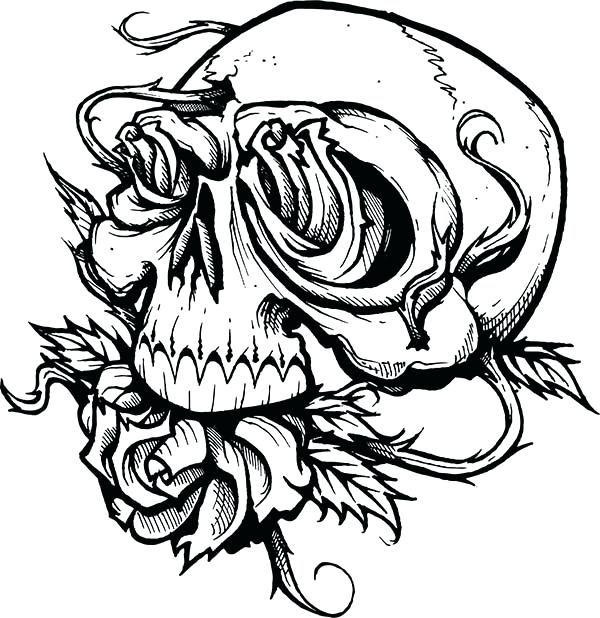 Skull Roses Drawing At Getdrawingscom Free For Personal Use Skull