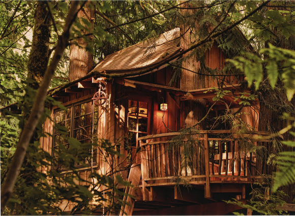 Treehouse on L.Type on Fuji DPII Crystal Archive Lustre