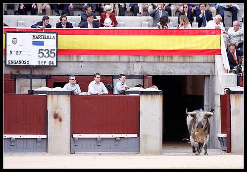 Toro de Martelilla