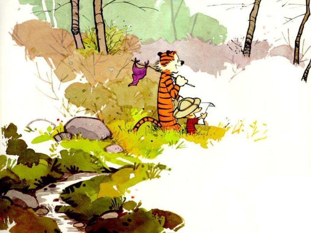 Calvin And Hobbes Calvin Hobbes Wallpaper 1395571 Fanpop