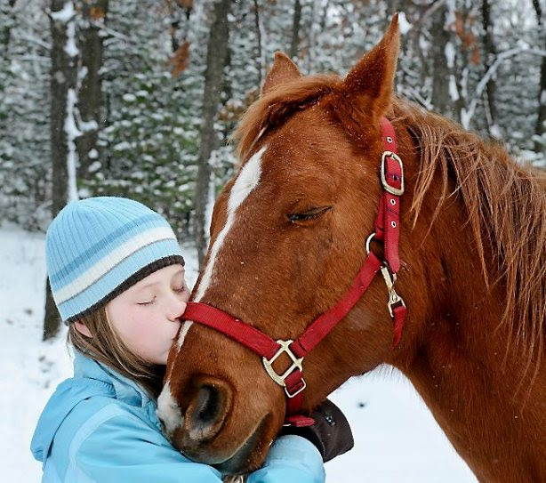 Dani Morrow, 12, of Osseo got the surprise Christmas present of her life when she received a horse and supplies from the area horse community Monday, Dec. 23, 2013, in Osseo, Wis. Morrow's father died of cancer in October, and her horse died a few weeks ago. (AP Photo/Eau Claire Leader-Telegram, Dan Reiland)