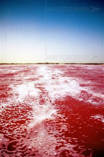 Ροζ λίμνη στη Σενεγάλη (13)