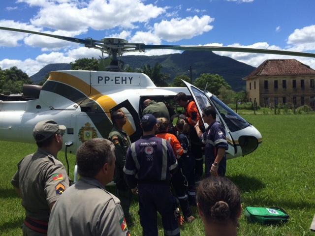 Praticantes de rapel morrem após ataque de abelhas no Litoral Norte Cid Martins/Rádio Gaúcha