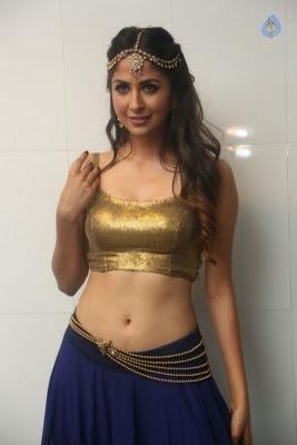 Malvika Raaj Stills - 18 of 26