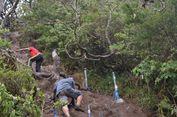 Cuaca Ekstrem, Pendakian di TN    Gunung Gede Pangrango Ditutup Sementara