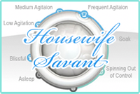 Housewife Savant