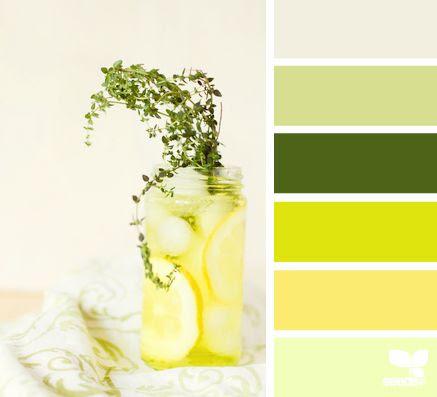 Lemon Thyme - http://design-seeds.com/index.php/home/entry/lemon-thyme