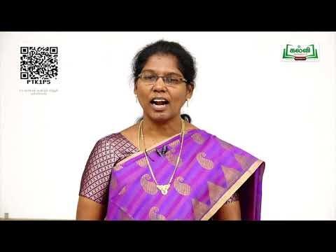 11th Commerce ஒட்டுறவு மற்றும் தொடர்புப்போக்கு பகுப்பாய்வு அலகு Kalvi TV