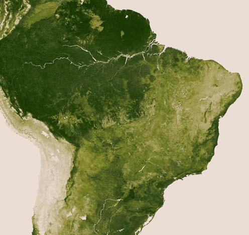 cobertura-vegetal-brasil