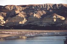 Arco do Carvalhão e Lagoa
