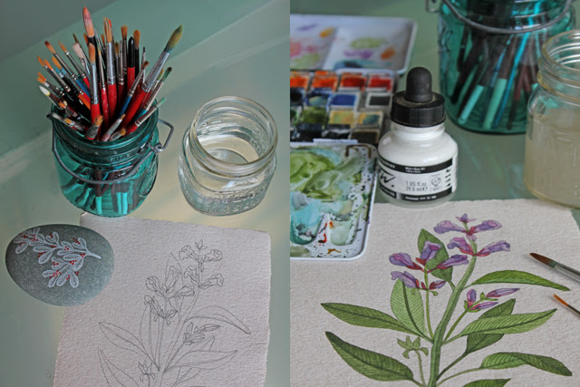 Painting herbs