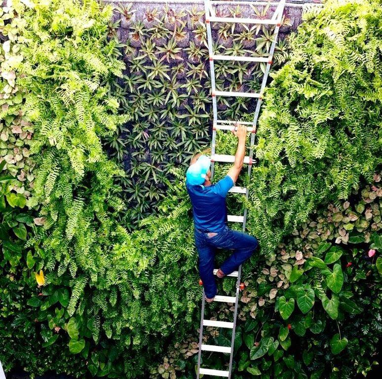 Un ejemplo de revestimiento vegetal.EFE/Verdtical