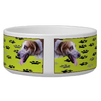 Hound Dog Food Bowl