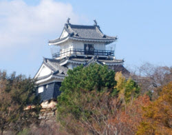 現在の天守閣は1958年に再建された鉄筋コンクリート造り(浜松市)