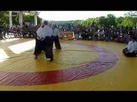 Aikido en el club de la lucha