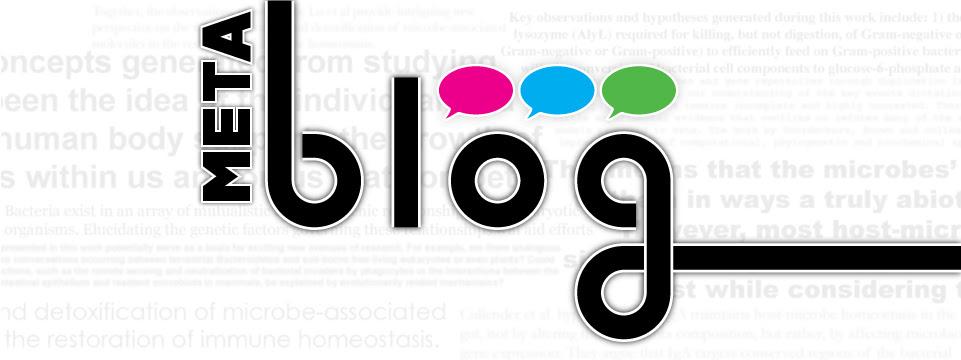 Image result for meta blog