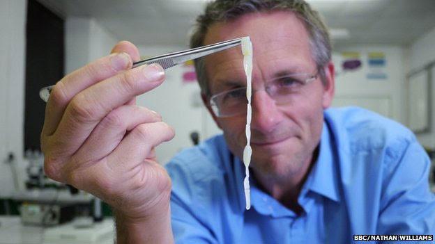 Michael Mosley conseguiu desenvolver três tênias no intestino (BBC)
