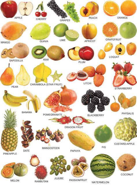 nama buah  bahasa inggris