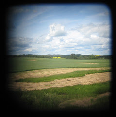 ttv landscape