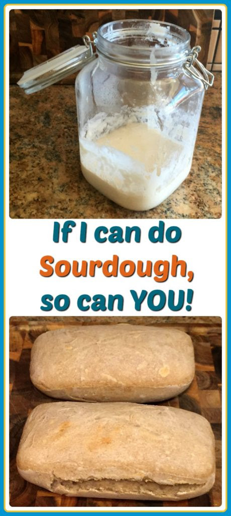 Making Sourdough Starter and Bread from Scratch » Amber Burst