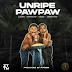 Naija:Download Music Mp3:- Zlatan – Unripe Pawpaw