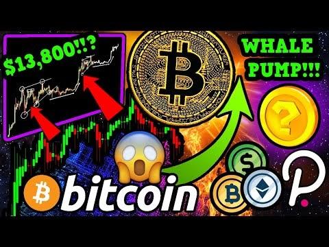 BITCOIN WHALES SETTING UP $13,800 BTC PUMP!!! ALTCOINS I'M SUPER BULLISH ON 🚀