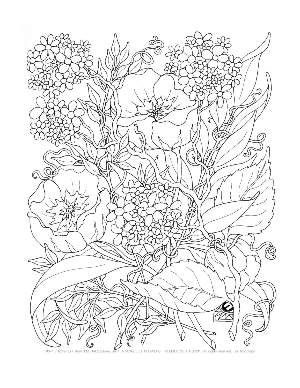 Free Nature Coloring Pages For Adults Coloring And Drawing