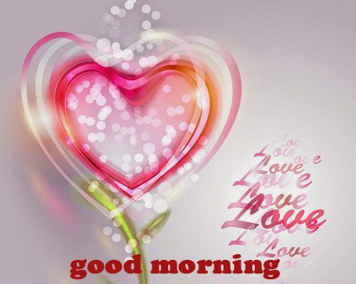 45 Latest Good Morning Love Images With Lovely English Hindi Quotes