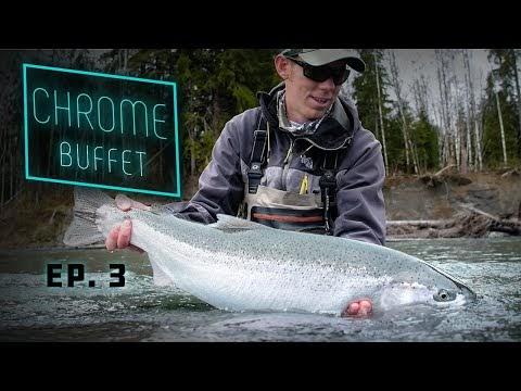 CHROME BUFFET - Olympic Peninsula Steelhead
