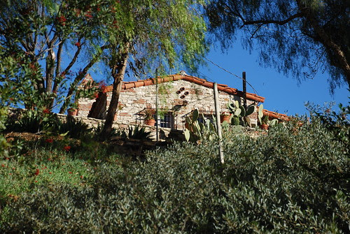 Lederer Residence and Immediate Environs