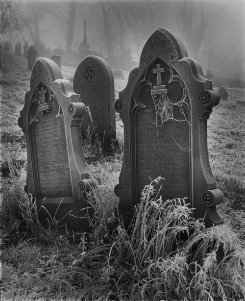 blackoutraven:  www.amateurphotographer.co.uk  The graves are shaking. The earth is rumbling. Soon the earth will open and THE DEAD will step out. THE DEAD love their games. THE DEAD GAME by Susanne Leist