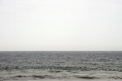 atlantic_4307_1 web