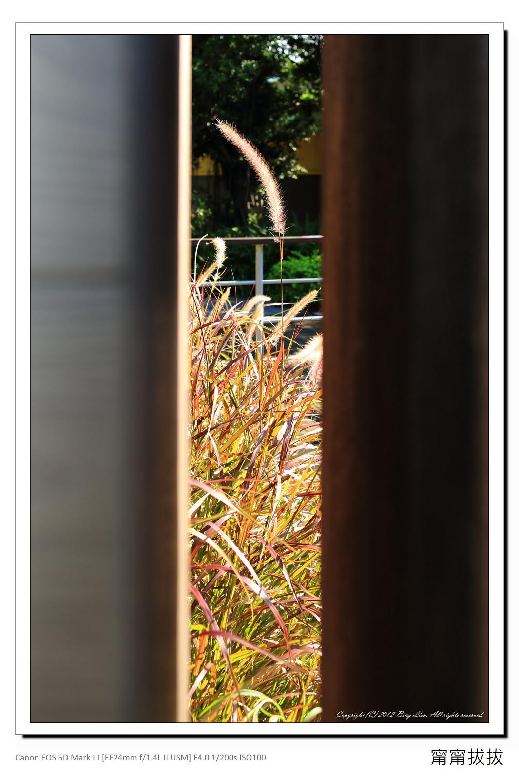 frame_BING2350