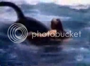 Ataque de Orca