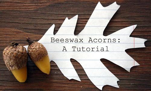 beeswax acorns tutorial