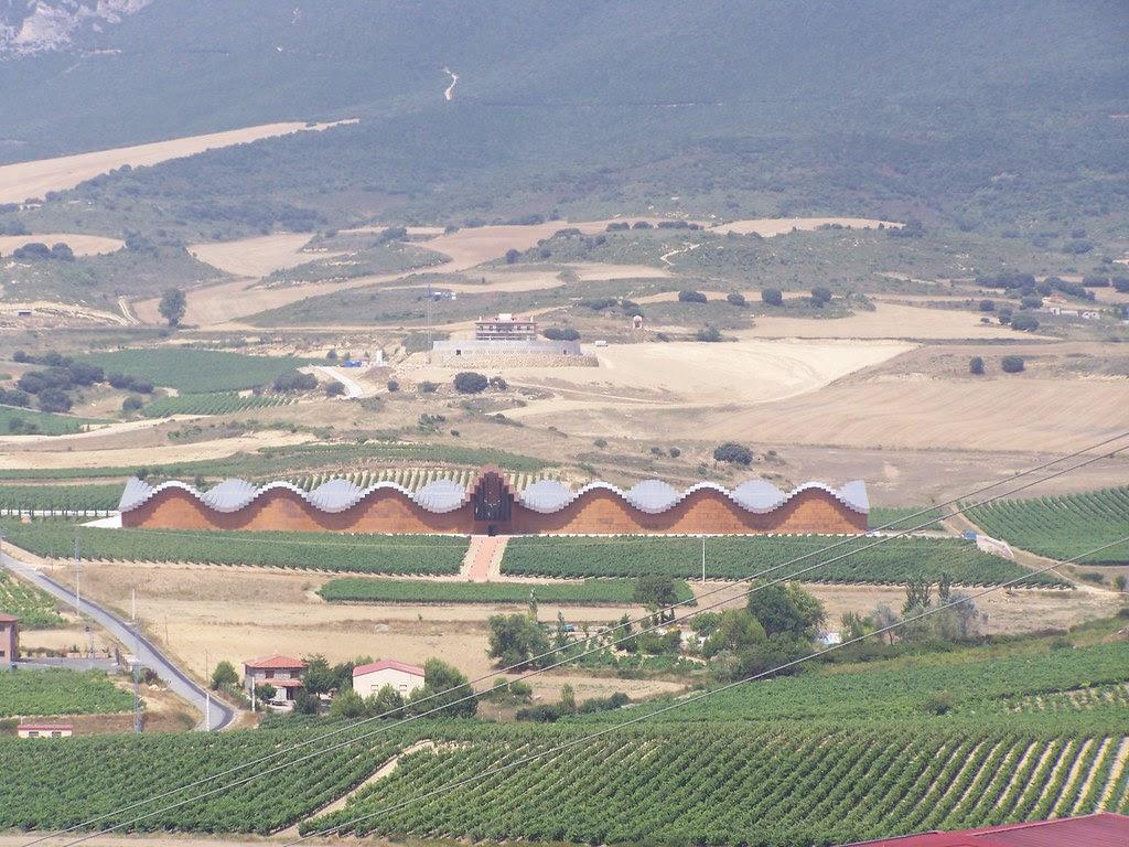 Viñedos de La Rioja 4