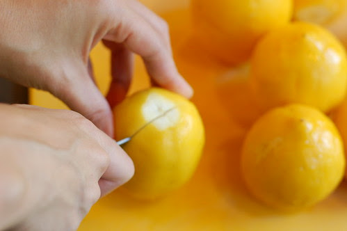 Juicing lemons by Eve Fox, Garden of Eating blog, copyright 2012