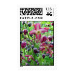 Medium stamp