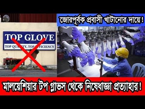 মালয়েশিয়ার টপ গ্লাভস কোম্পানির জন্য সবুজ সংকেত যুক্তরাষ্ট্রের। Malaysia Top Gloves.