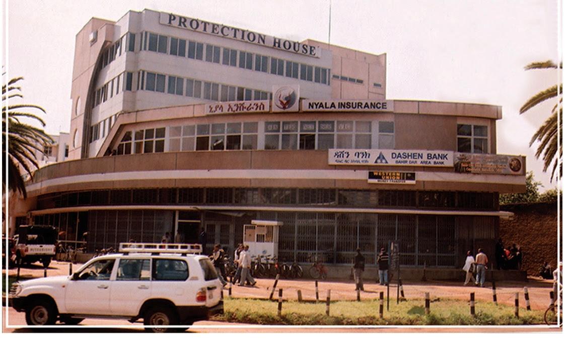 Investments | Nyala Insurance