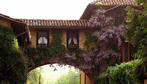 Pollone - Verso l'ingresso alla Burcina (by mariagraziaschiapparelli)